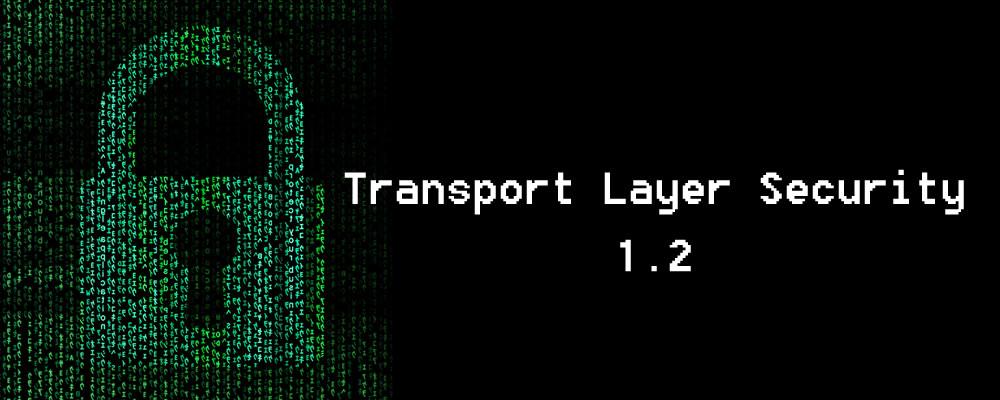 Perfect Pixels Web Design Network Security TLS hacking ARP Spoofing